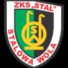 Wisła Puławy - Stal Stalowa Wola