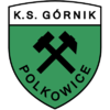 Górnik Polkowice stary herb.png